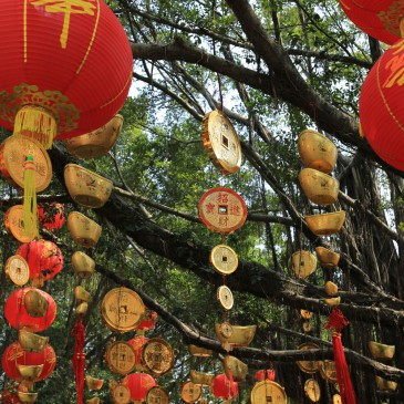 Februar/ Shenzhen, China:  Steuerberatung und Review
