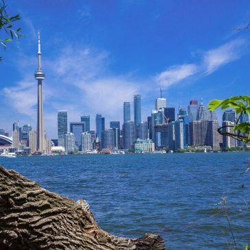 Mai/ Toronto, Kanada: Steuerberatung