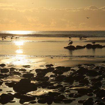 August – Aberdeen
